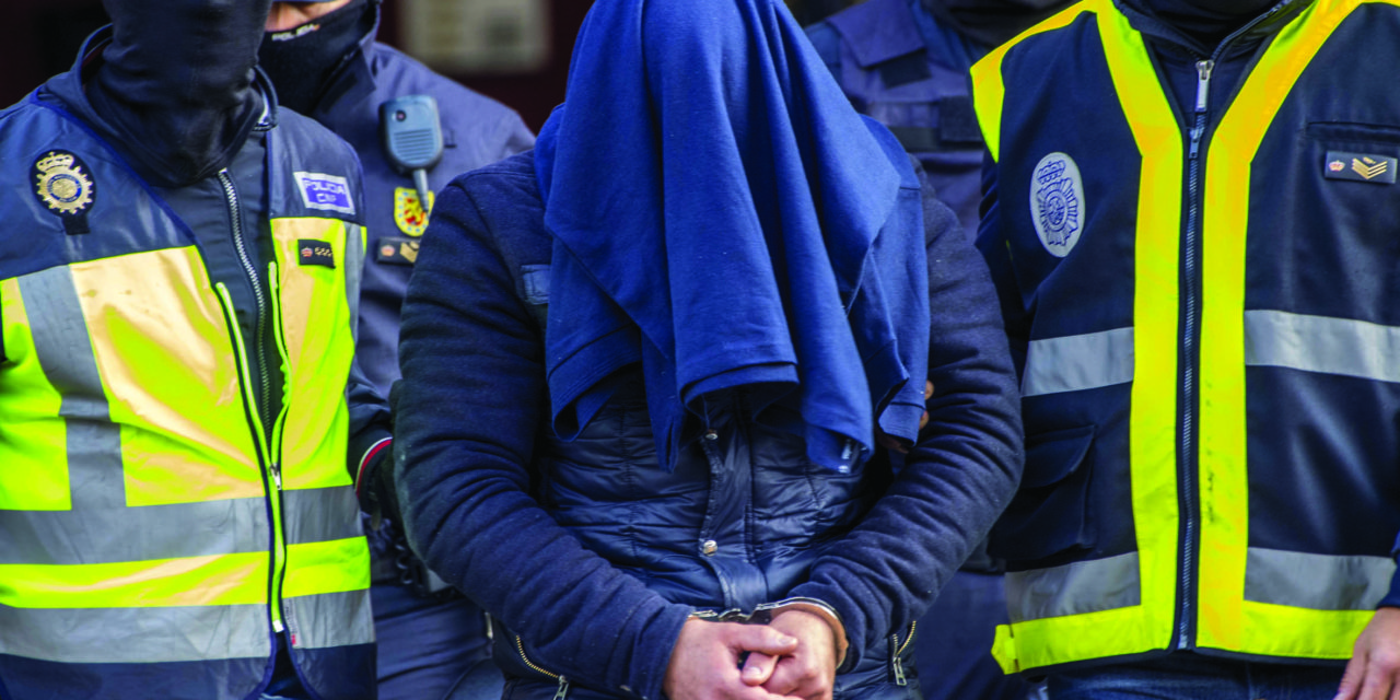 Police arrest 'lone wolf' terrorist