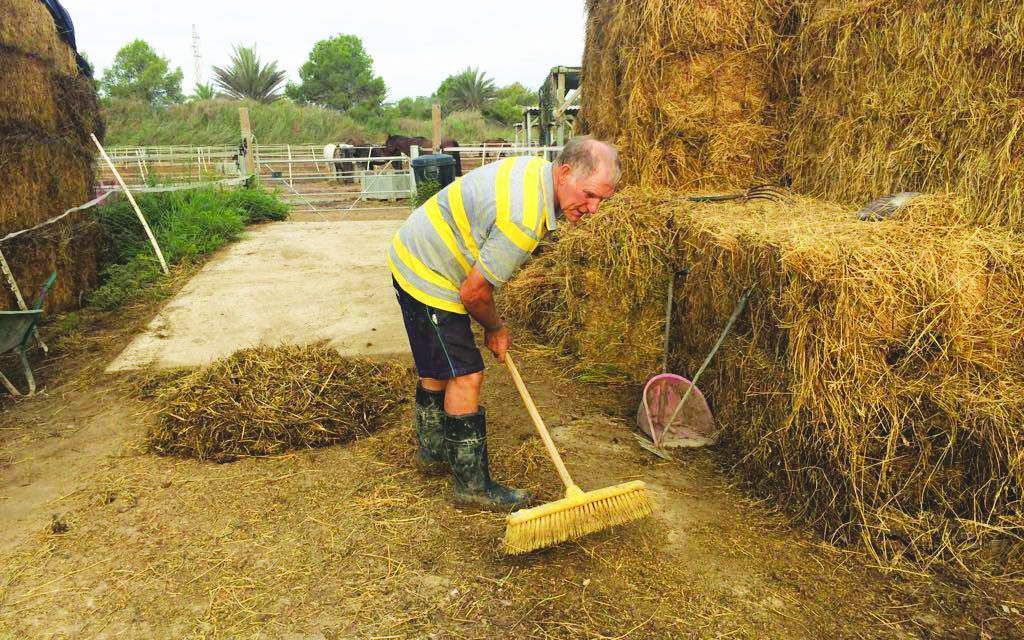 Easy Horse Care raises €12,000 to replace mini digger
