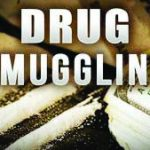 Drug traffickers distributed a thousand kilos of cocaine