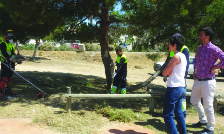 Emergency Plan for Costa parks and gardens