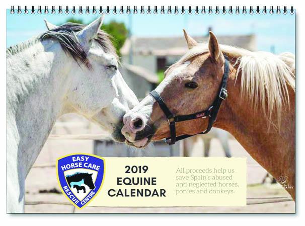 2019 equine fundraising calendar